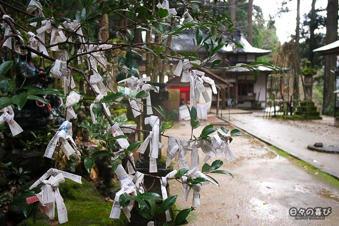 omikuji dans les branches d'un arbre