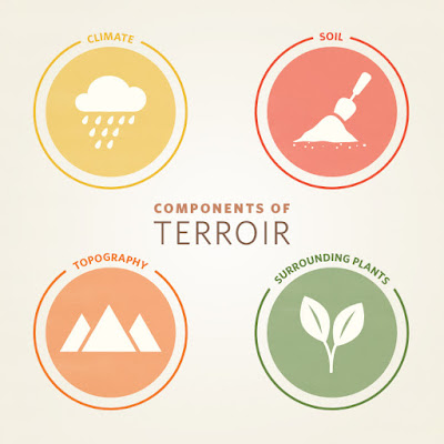 terroir is about the growing environment