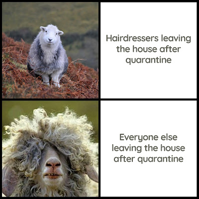 Hairdressers Essential Business Covid19 Meme