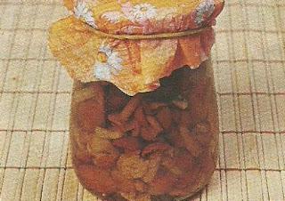 Секреты и советы по хранению засоленных, маринованных и сушеных грибов