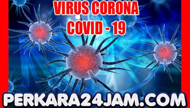 World Health Organization Perlu Waktu 5 Tahun Untuk Mengendalikan Virus Corona