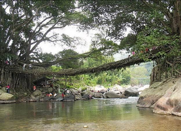 Perkembangan Usaha Jasa Pariwisata Di Sumatera Barat