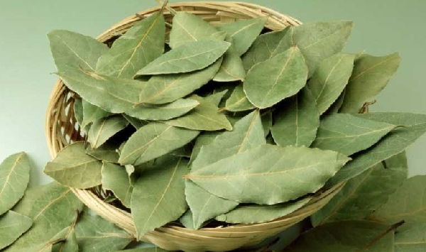 What are the benefits of bay leaf for marital relationship?