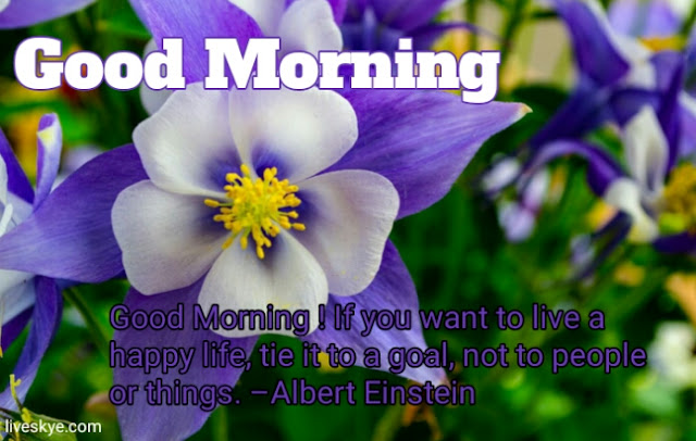 Good morning images with quotes for Wattsapp, Beautiful Good Morning Pictures