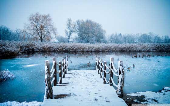 Besplatne zimske pozadine za računar - prvi sneg