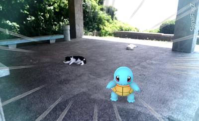 Squirtle, Kannonzaki Park.