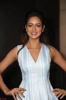 Shanvi Looks super cute in Small Mini Dress at IIFA Utsavam Awards press meet 27th March 2017 37.JPG