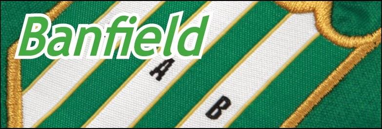http://divisionreserva.blogspot.com.ar/p/banfield.html