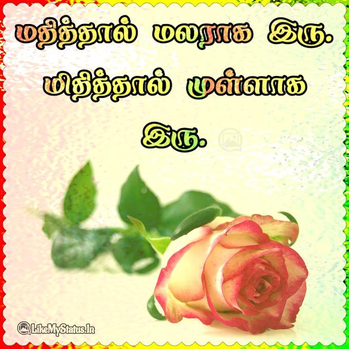 வாழ்க்கை கவிதை ஸ்டேட்டஸ்