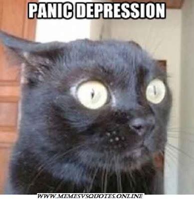 Panic depression