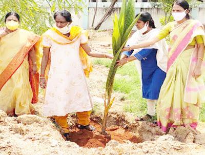 గ్రీన్ ఛాలెంజ్తో హరిత విప్లవం_harshanews.com