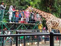 Destinasi Wisata Keluarga Yang Ada di Surabaya