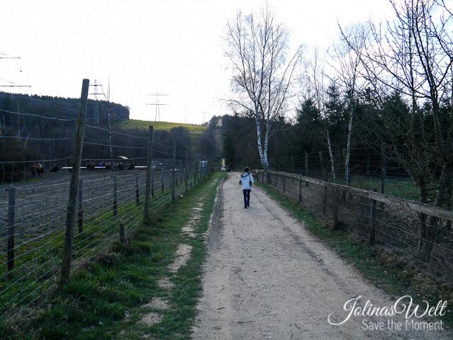 Tierpark Rheinböllen