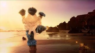 Cookie's Crumby Pictures The Biscotti Kid, Biscotti Karate, Cookie-san, Sesame Street Episode 4412 Gotcha season 44