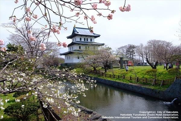 Tempat terbaik menikmati sakura di Hokkaido