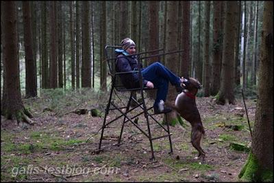 Jägersitz im Wald