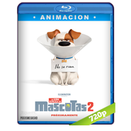 La vida secreta de tus mascotas 2 (2019) BRRip 720p Audio Dual Latino-Ingles