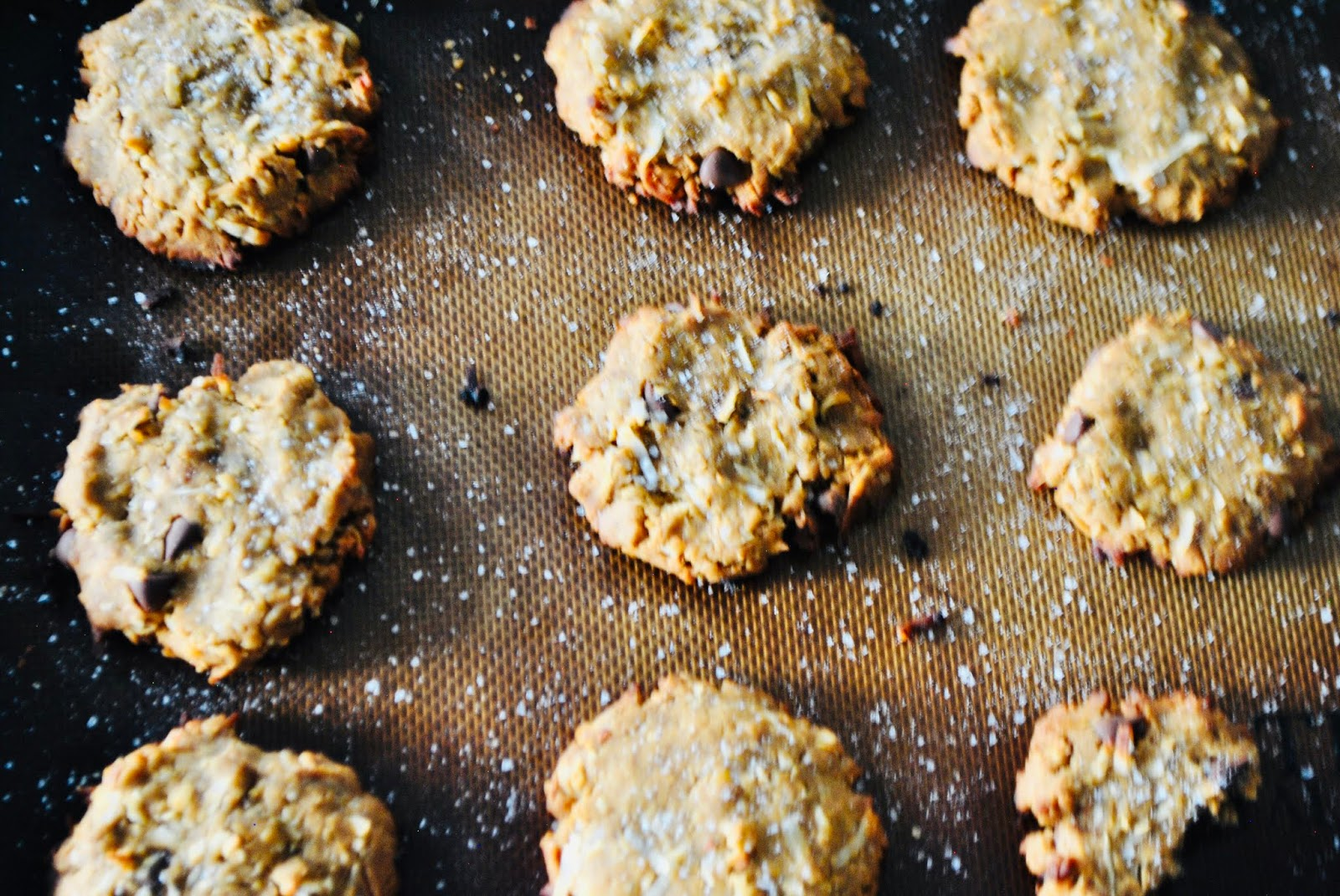 A healthy cookie alternative with toasted coconut and chocolate chips, gluten free dairy free
