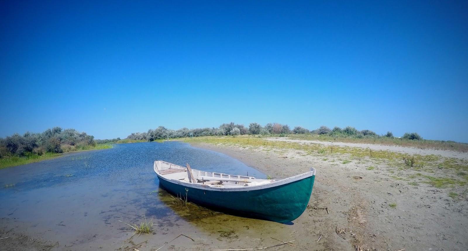 Dzika Europa ukryta w Delcie Dunaju
