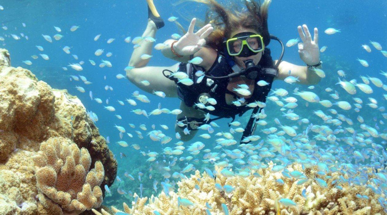 Погружение с аквалангом на Барьерном рифе на Багамах