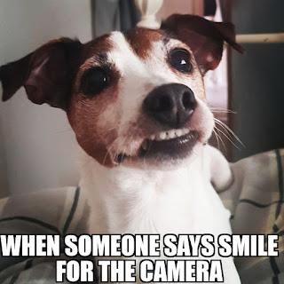camera,smile