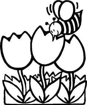 Imagenes Para Colorear Dibujo De Abeja Sobre Las Flores Para Colorear
