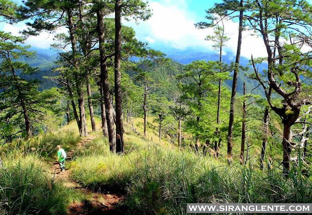 Trails of Mt. Ugo