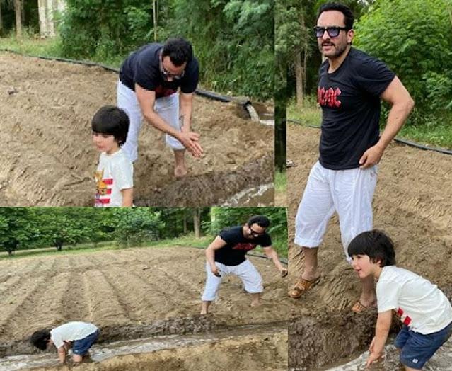 बेटे तैमूर संग खेतों पानी लगाते नजर आए सैफ अली खान, तस्वीरें हुई वायरल