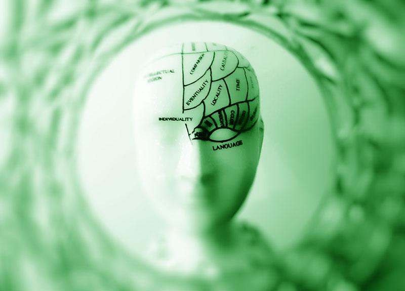 memory sensory memory types of memory long term memory bad memory memory exercises save memory