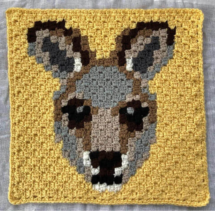 Kangaroo  C2C Square, version 2