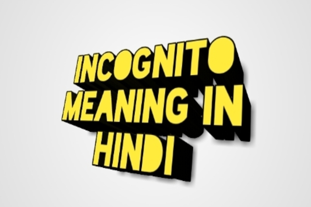 Incognito meaning in hindi। incognito mode क्या है