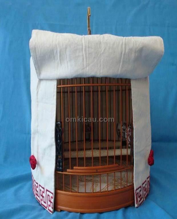 Burung Cendet Pentingnya Kerodong Bagi Burung Cendet Aneka Model Kerodong Burung Dan Manfaatnya Perawatan Burung Cendet