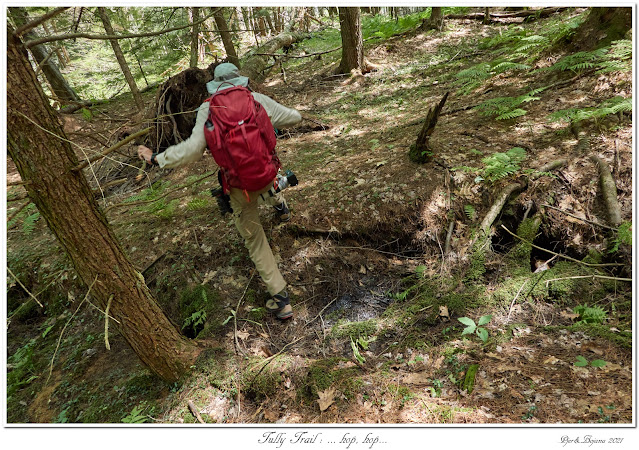 Tully Trail: ... hop, hop...