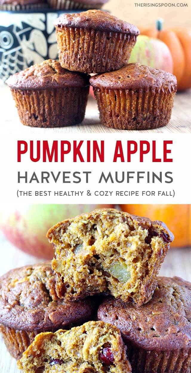 An easy recipe for Pumpkin Apple Muffins that are incredibly moist, fragrant, and made with simple (yet healthy) ingredients like pumpkin puree, fresh apple chunks, oats, dried cranberries, pumpkin pie spice & cinnamon. Bake a batch in less than 30 minutes to make your home smell super cozy & give your family a slightly sweet treat to celebrate the fall season. (Gluten-Free & Vegan Option)