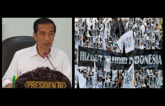 Image result for HTI dan Jokowi