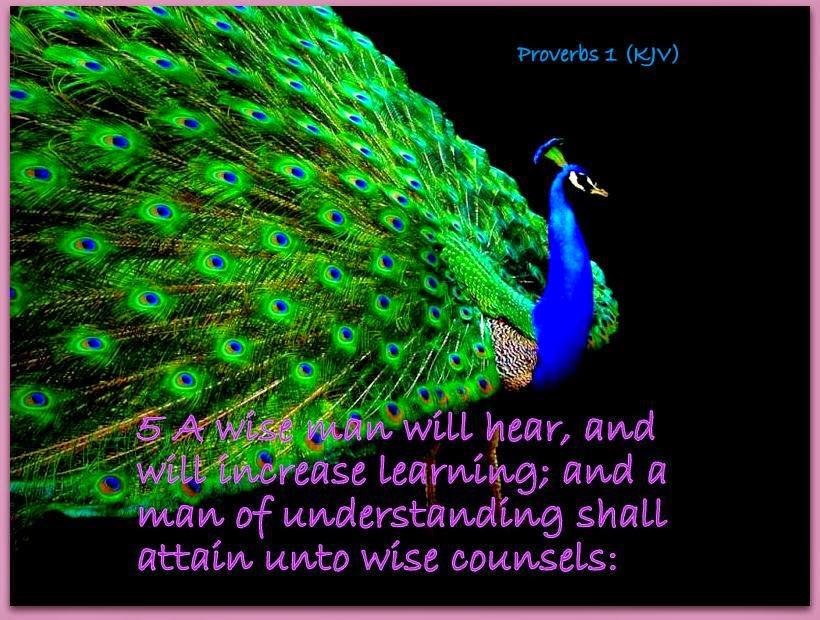 Red Pill Diaries: Proverbs 1 (KJV)