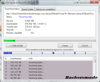 Internet Download Manager 6.25 build 18 + Full Patch