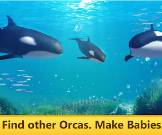 Orca Simulator: Animal Quest