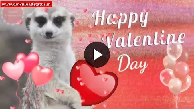 Top 10+ Best Valentine Day Emostional Status Video Download