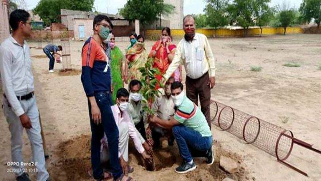 Teachers Planted Saplings Trees In The School Premises Save Environment News Vision Hindi Samachar