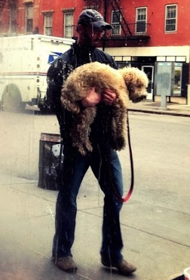 Man carrying a dog