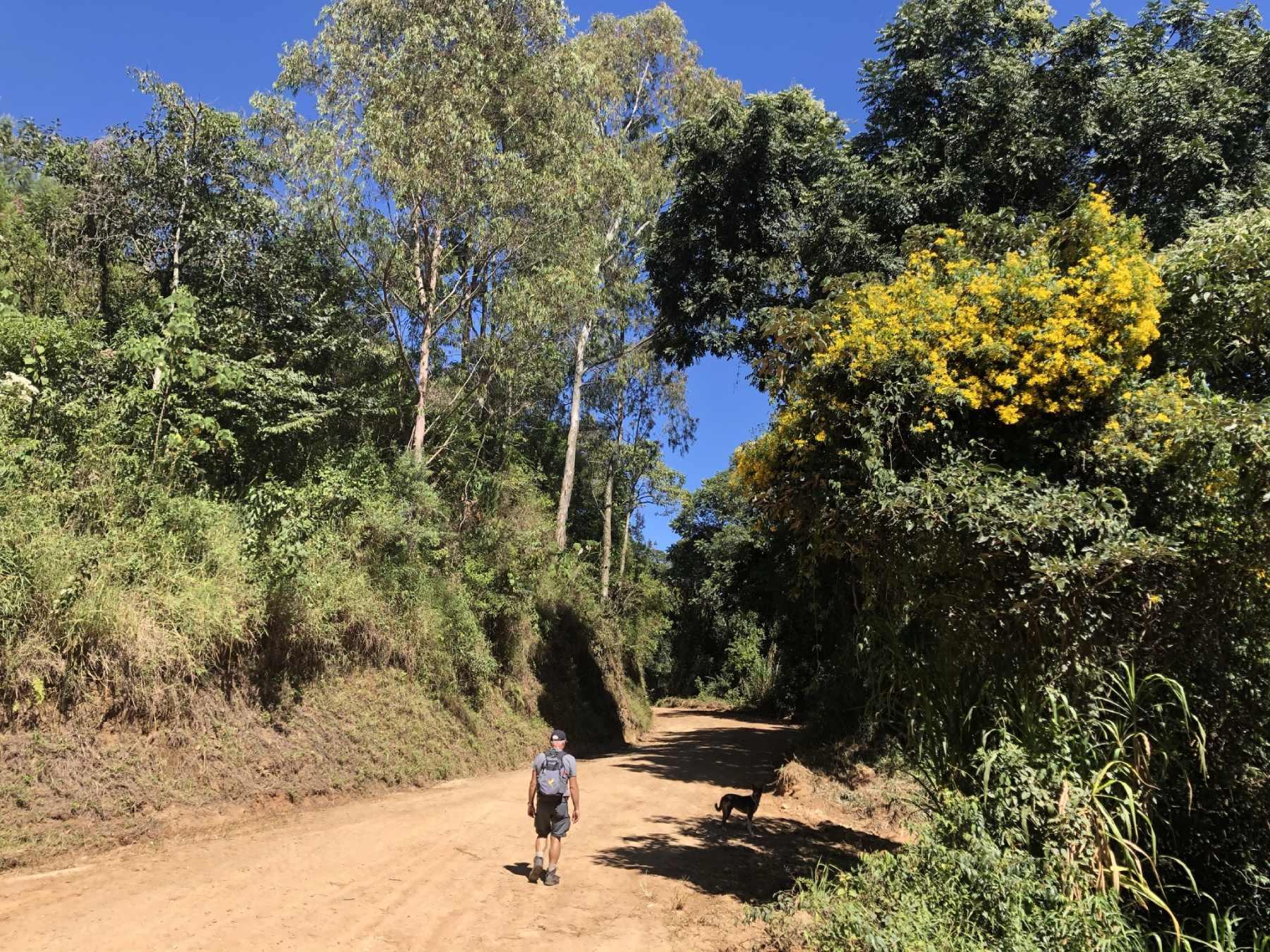 Caminho para Bairro Pereiras