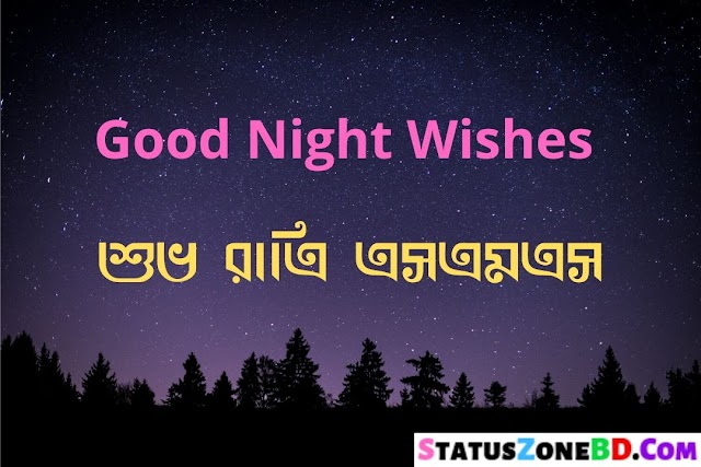Best Good Night SMS Bangla - Romantic Good Night SMS - GD N8