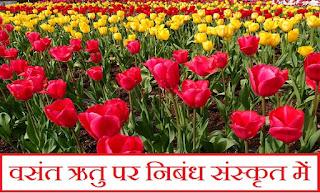 Vasant Ritu Sanskrit Essay