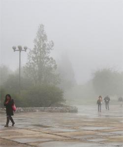 Meteorología Al Día Vive Saltillo Clima Atípico En Primavera