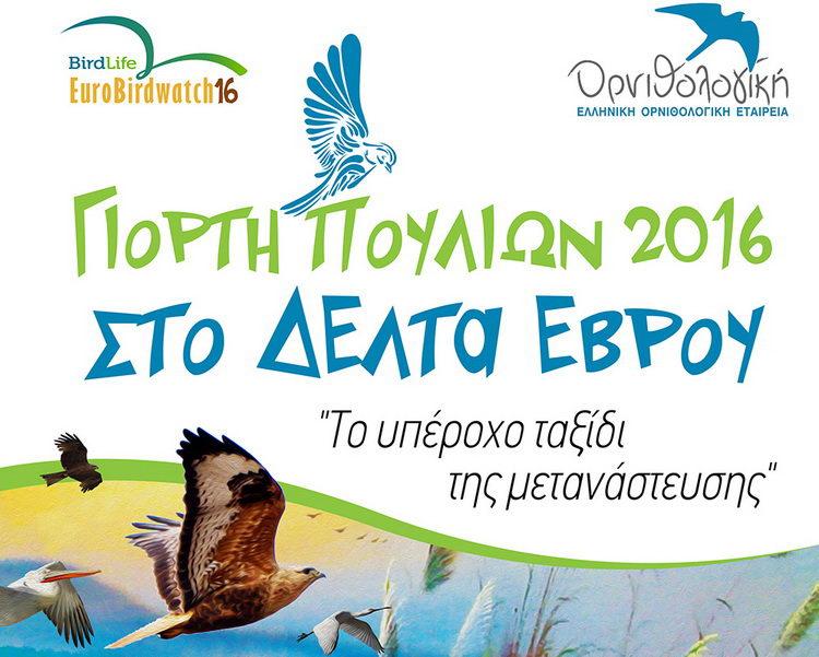 Πανευρωπαϊκή Γιορτή Πουλιών στο Δέλτα του Έβρου
