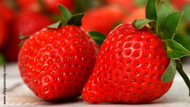 111+ Strawberry Quotes For Instagram [ 2021 ] Also Captions And Puns