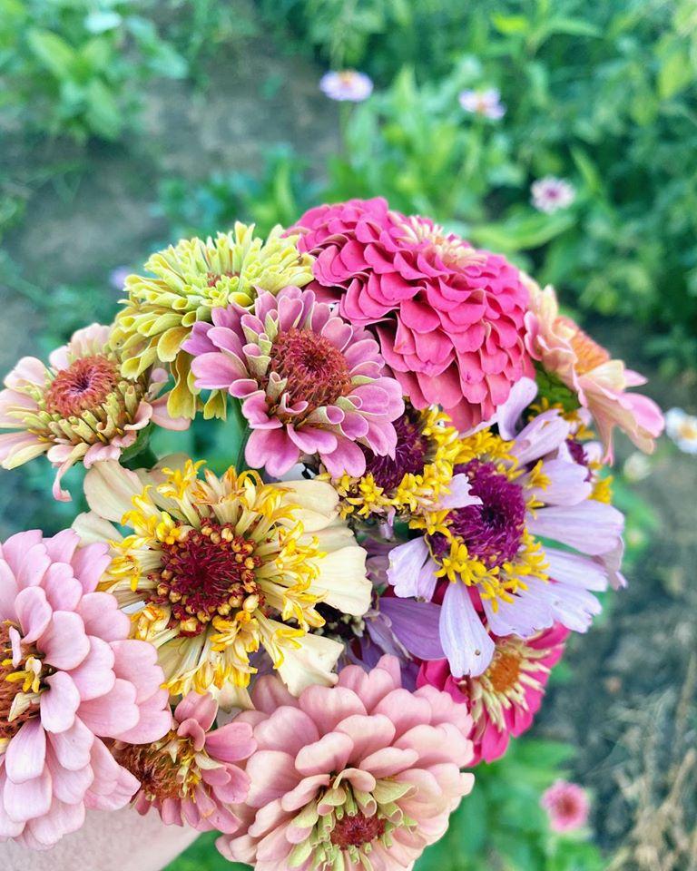 Zinnia Field Bouquet