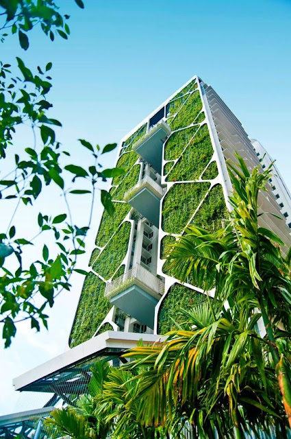 Tree House - The Largest Vertical Garden