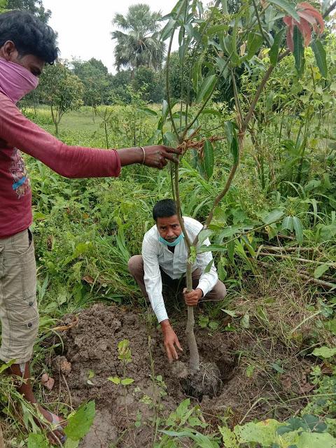 जदयू नेता ने किया वृक्षारोपण